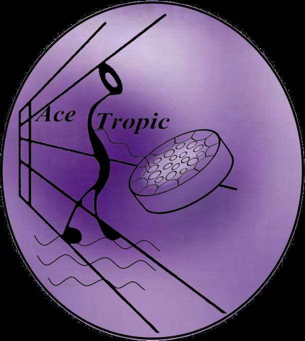 Ace Tropic Steel Drum Music
